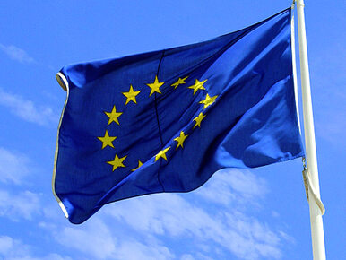 """""""Ukraina, Gruzja i Mołdawia chcą być częścią UE. To nie zależy od Moskwy"""""""