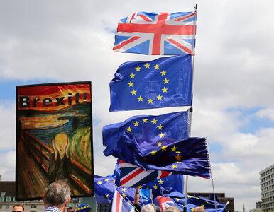 100 tys. osób protestowało w Londynie. Brytyjczycy chcą drugiego...