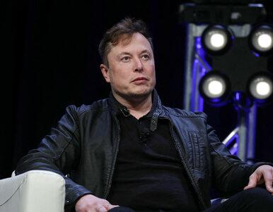 Elon Musk idzie na wojnę z lokalnymi władzami. Otworzy fabrykę Tesli...