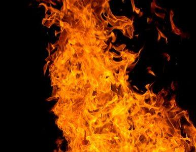 Pożar pomieszczeń gospodarczych. Dwie osoby zginęły
