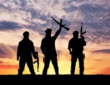 Dżihadyści przejęli kontrolę nad miastem w Syrii. To pierwsza wygrana...