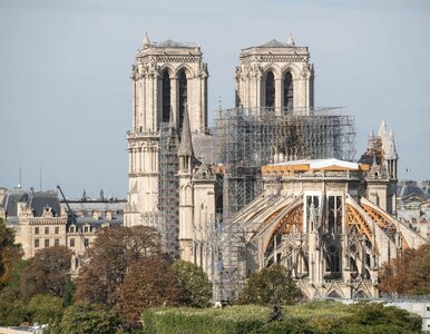 Z Notre Dame wkrótce znikną rusztowania. Tak teraz wygląda katedra