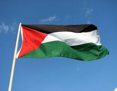 Szwecja uzna Palestynę za państwo?