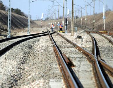 """""""Sytuacji na kolei winne są rządy i prezesi spółek"""""""