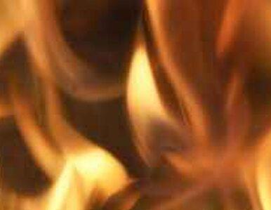 Warszawa: pożar na Bielanach - jedna osoba nie żyje