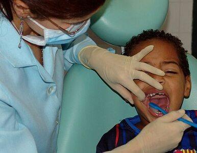 Koniec z plombą? Chcą regenerować zęby