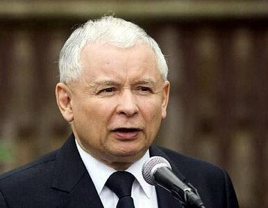 Niesiołowski: Kaczyńskiemu miesza się in vitro, pornografia,...