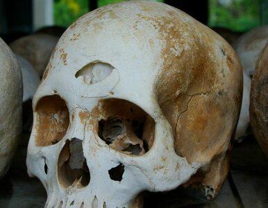 IPN: odnaleziono szczątki ofiar komunistów