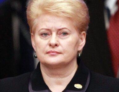 """""""Polska woli Rosję od Litwy"""". Politycy oburzeni wypowiedzią prezydent"""