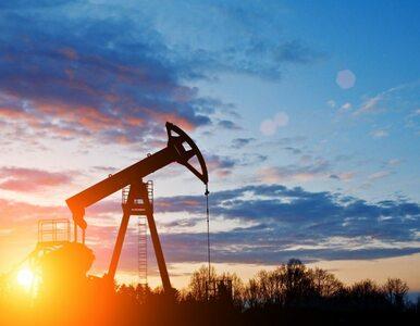 Czerwiński: Inwestycje PERN zabezpieczają Polsce dostęp do ropy naftowej