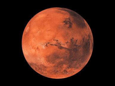 """NA ŻYWO: Mars najbliżej Ziemi od 15 lat. Zobacz """"wielką opozycję""""!"""