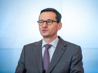 """Morawiecki dla """"Die Welt"""": Trzeba zbadać, ilu ludzi w okupowanej Polsce..."""