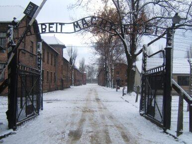 Muzeum Auschwitz apeluje do zwiedzających: Nie pozujcie na torach...