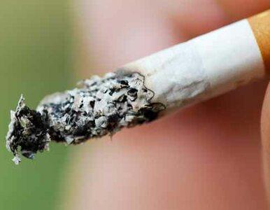 Nowa Ruda: robili podkop pod kiosk, by... ukraść paczkę papierosów