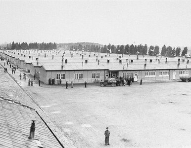 Puzzle z... obozem koncentracyjnym. Dla ośmiolatków