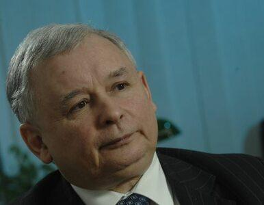 Kaczyński: Jestem przyjacielem zwierząt. To mnie różni od niektórych