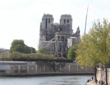 """Pożar Notre Dame. Francuzi wybudują """"tymczasową drewnianą katedrę""""?"""