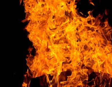 Pożary zbliżają się do fabryki amunicji - gaszenie utrudnione