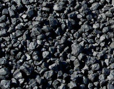 Dlaczego Polska sprzedaje coraz mniej węgla?