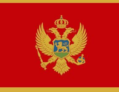 Czarnogóra sprzedaje przedsiębiorstwa sektora obronnego