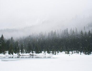Znaleziono ślady bosych stóp na śniegu. Trwa nietypowa akcja poszukiwawcza