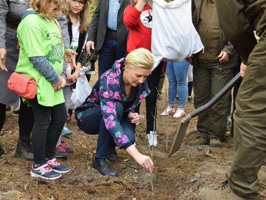 Pierwsza Dama wzięła udział w sadzeniu lasu w okolicach Radomia