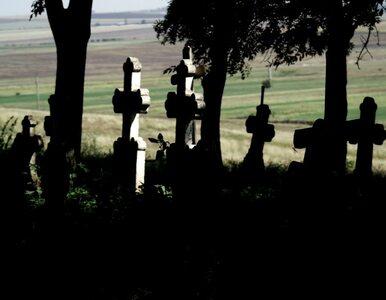 Zniszczyli XIX-wieczny cmentarz. Zostały tylko 3 mogiły