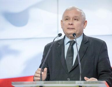 Dzierżanowski: Szok! Kaczyński nie jest ekonomiczną ciapą