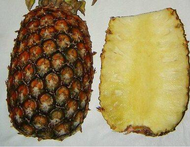 Strzeż się przed rakiem. Jedz ananasy!