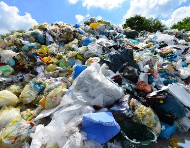 Firmy odbierające odpady apelują o pilne zmiany w przepisach. Chodzi o...