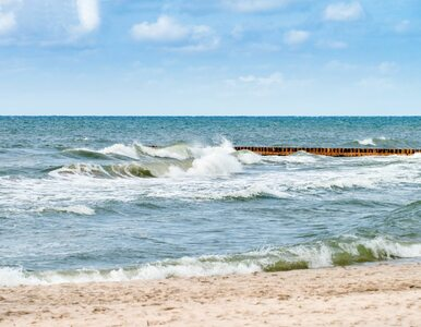 Trotyl i broń chemiczna na dnie Bałtyku. AI pomoże naukowcom oszacować...