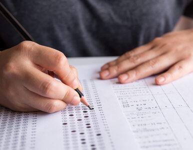 Wyniki matur 2019. CKE podsumowała osiągnięcia uczniów
