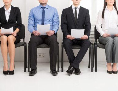 Oferta zagranicznych pracodawców coraz lepsza. 1,2 miliona Polaków...