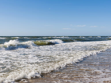 """Bałtyk jako """"morze problemów"""". Wzrost temperatury i zakwaszenia"""