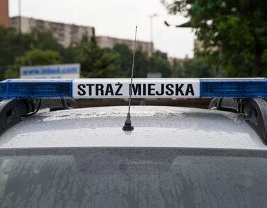 Łódź. Wściekły obywatel nagrał zgromadzenie strażników miejskich bez...
