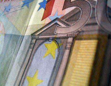 W 2010 roku Niemcy muszą pożyczyć 65 miliardów euro
