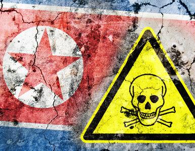 """Próba nuklearna KRLD. Polska """"w najostrzejszych słowach"""" potępiła Koreę..."""