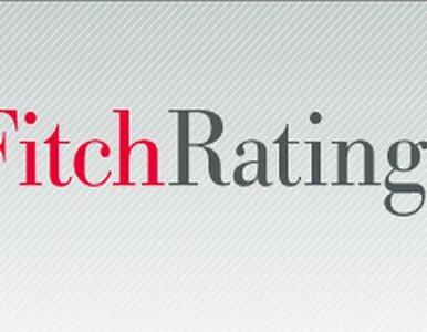 Fitch: polskie banki są w bardzo dobrej sytuacji