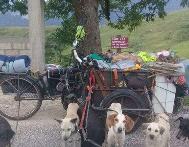 Podróżuje przez Meksyk, towarzyszy mu 14 psów. Chce zwrócić uwagę na...