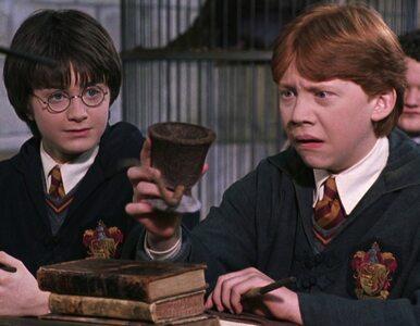Te gwiazdy uwielbiają Harry'ego Pottera. Mały czarodziej znów czaruje!