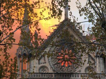 Prezydent Francji przysięga: Wspólnie odbudujemy Notre Dame. W sieci...