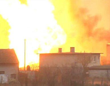 Dramat w Wielkopolsce. Lasy i domy w ogniu, są ofiary