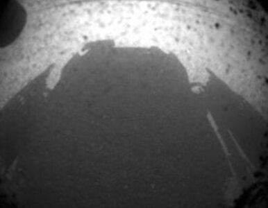 Zdjęcia Curiosity już w Polsce