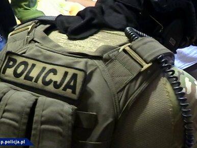 Spektakularna akcja CBŚP. Uwolniono Polkę porwaną dla okupu w RPA