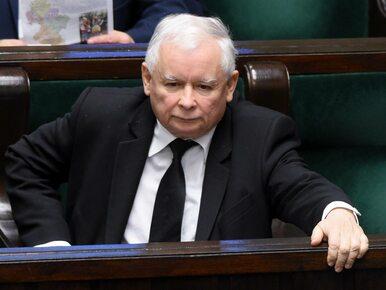 Jarosław Kaczyński chce zmian w prawie łowieckim. PiS wniesie poprawki?
