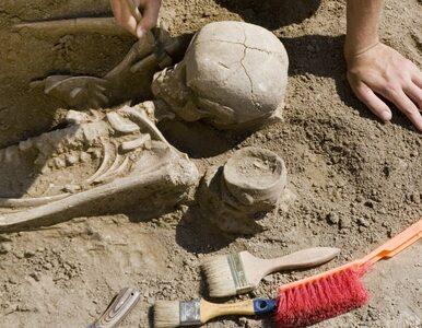 Grób starożytnego księcia odnaleziony. Naukowcy: Może skrywać skarby