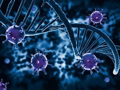 Przełomowe badania naukowców. Nowy lek niemal całkowicie zwalczył wirusa...