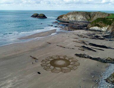 Tajemnicze wzory na plażach wzbudzają zainteresowanie. Za wszystkim stoi...