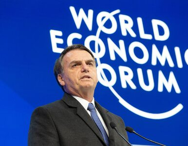 Prezydent Brazylii do Angeli Merkel: Bierz swoją kasę i zalesiaj Niemcy
