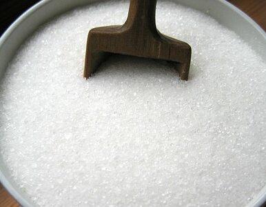 Jesz dużo cukrów? Możesz mieć otyłe dzieci